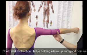 Controlled Protraction of scapular